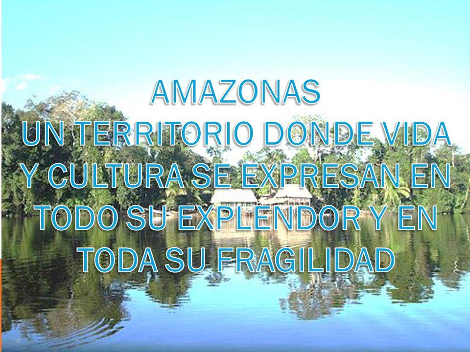 MUSEO ETNOGRÁFICO DEL HOMBRE AMAZÓNICO
