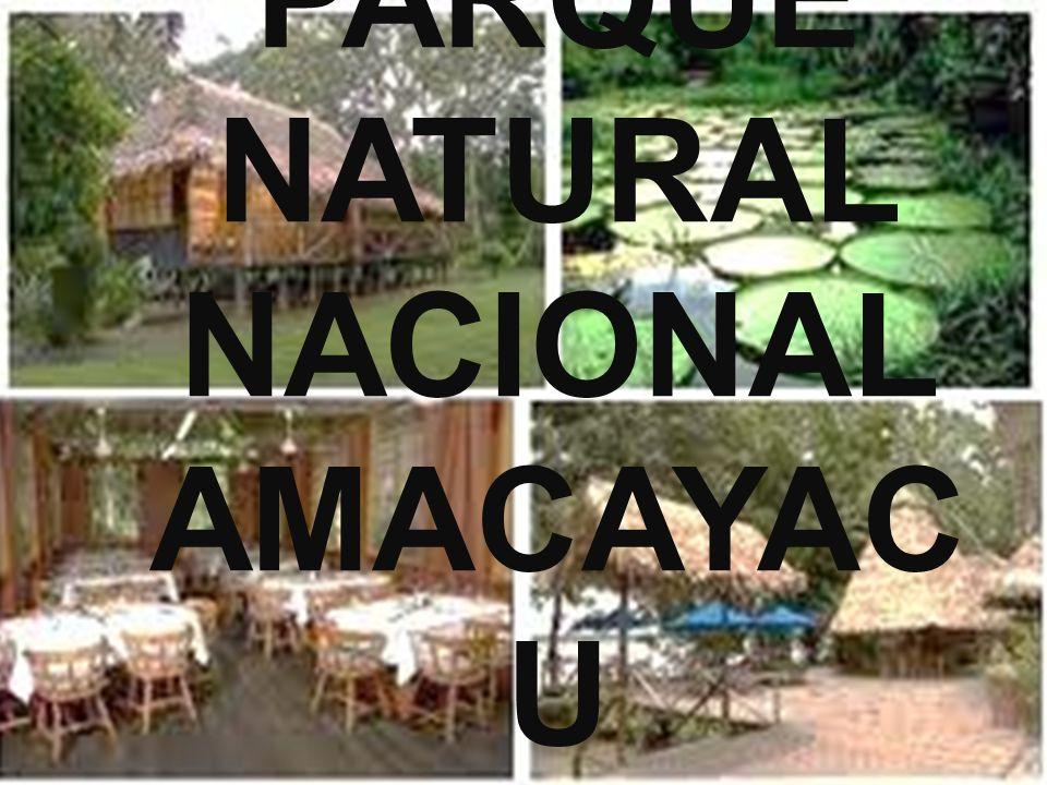 PARQUE NATURAL NACIONAL AMACAYAC U