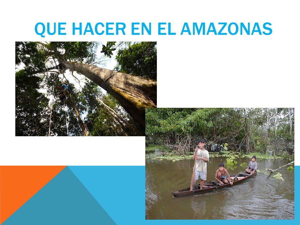 QUE HACER EN EL AMAZONAS