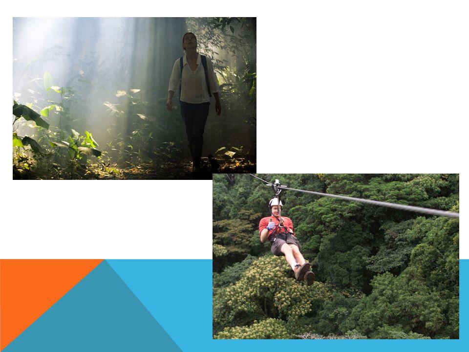 FERIAS Y FIESTAS *Festival de la Confraternidad Amazónica: julio *Triatlón Internacional de la Selva: julio *Festival Internacional de Música Popular Amazonense Pirarucú de Oro: noviembre