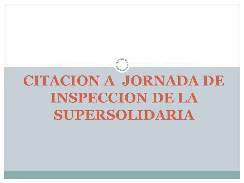 CITACION A JORNADA DE INSPECCION DE LA SUPERSOLIDARIA