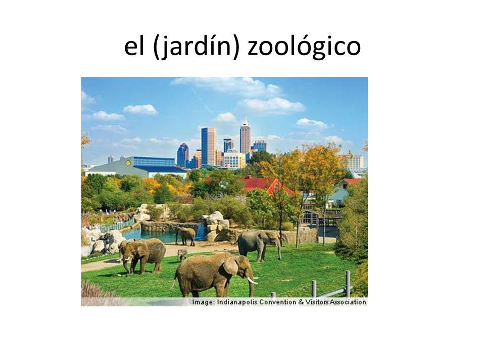 el (jardín) zoológico