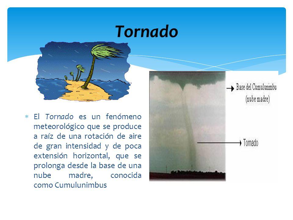Tornado El Tornado es un fenómeno meteorológico que se produce a raíz de una rotación de aire de gran intensidad y de poca extensión horizontal, que s