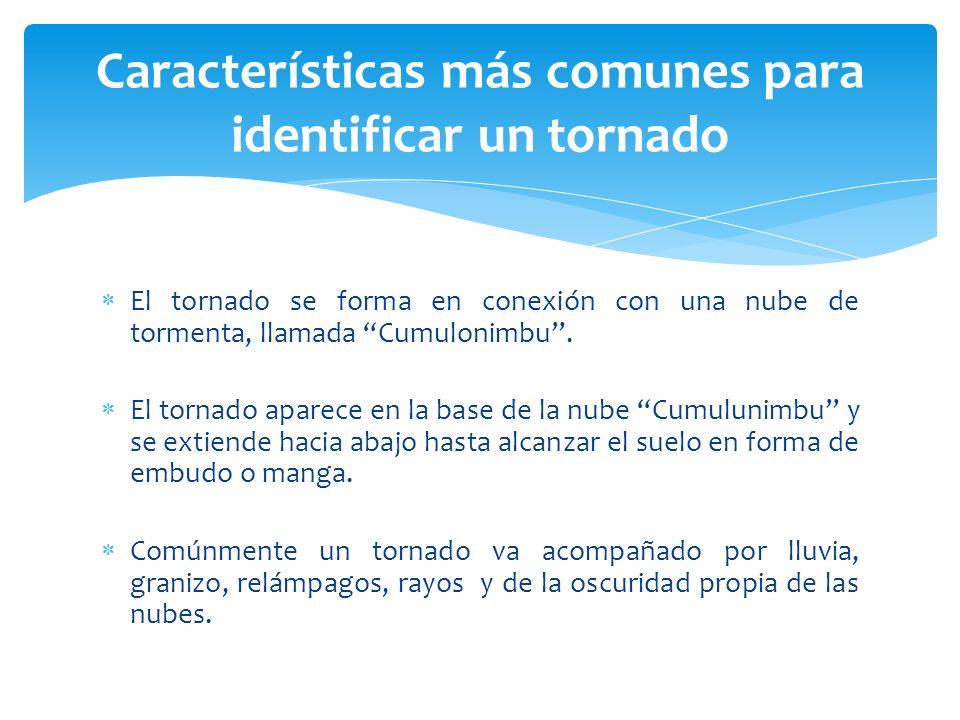 Características más comunes para identificar un tornado El tornado se forma en conexión con una nube de tormenta, llamada Cumulonimbu. El tornado apar
