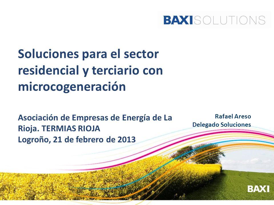 Soluciones para el sector residencial y terciario con microcogeneración Asociación de Empresas de Energía de La Rioja. TERMIAS RIOJA Logroño, 21 de fe