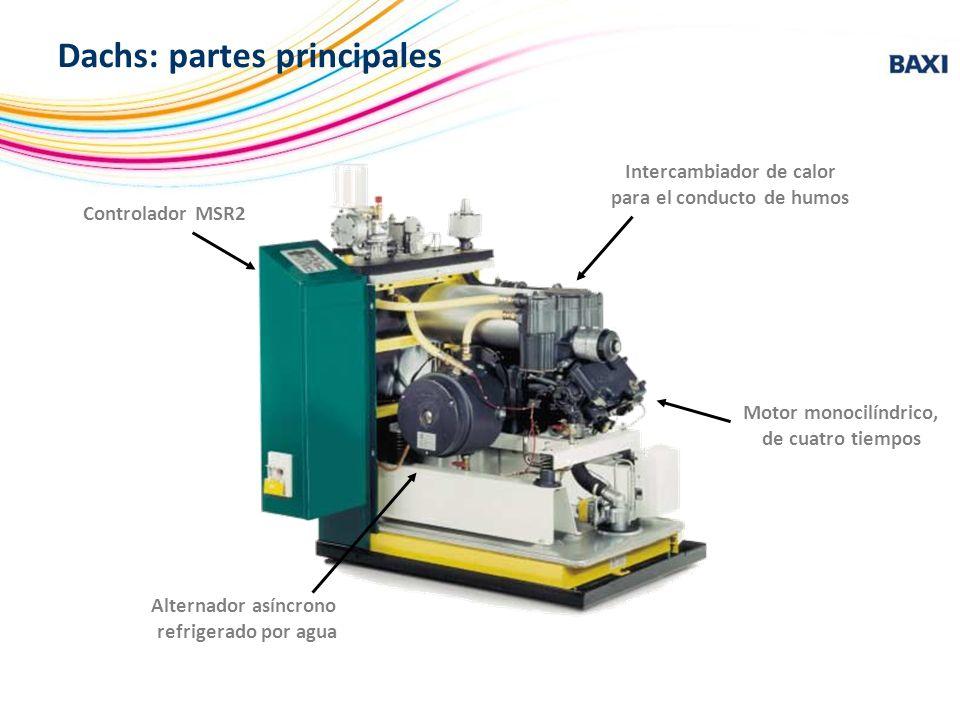 Controlador MSR2 Intercambiador de calor para el conducto de humos Motor monocilíndrico, de cuatro tiempos Alternador asíncrono refrigerado por agua D