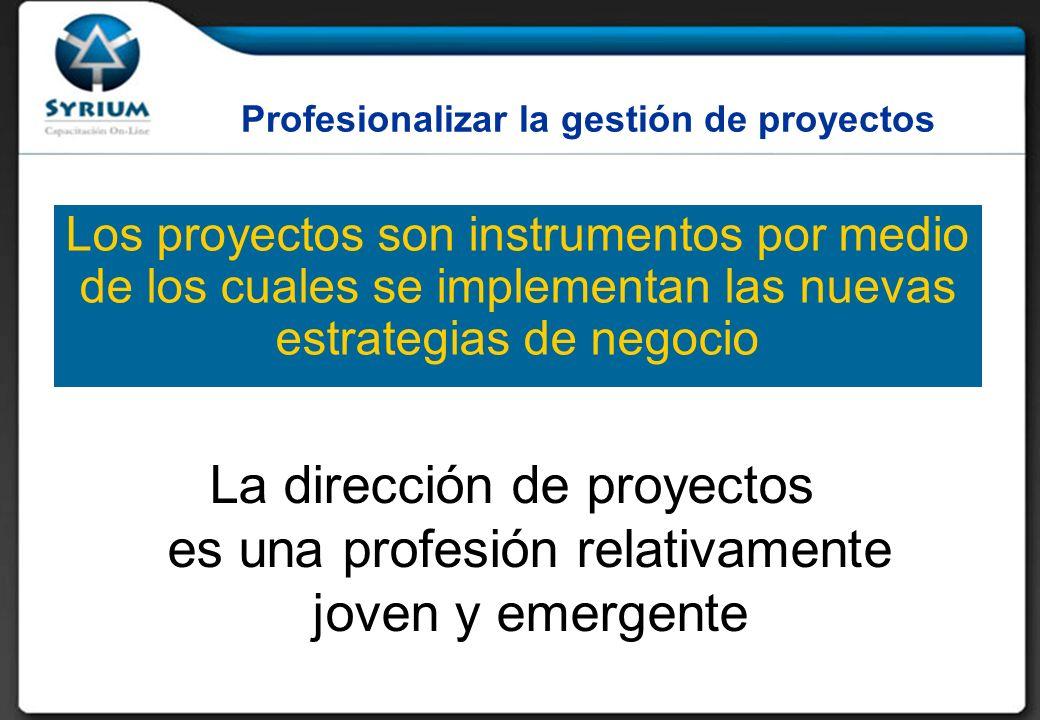 Profesionalizar la gestión de proyectos Los proyectos son instrumentos por medio de los cuales se implementan las nuevas estrategias de negocio La dirección de proyectos es una profesión relativamente joven y emergente