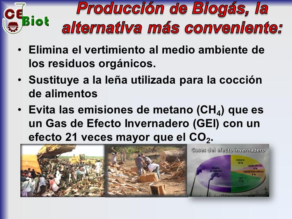 Elimina el vertimiento al medio ambiente de los residuos orgánicos.