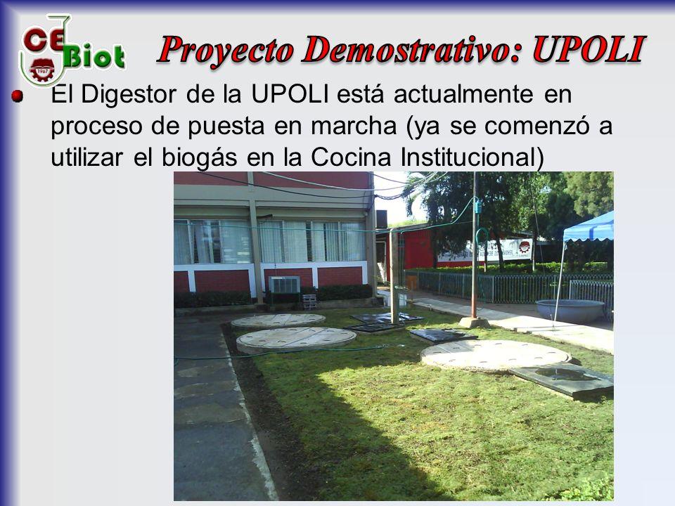 El Digestor de la UPOLI está actualmente en proceso de puesta en marcha (ya se comenzó a utilizar el biogás en la Cocina Institucional)