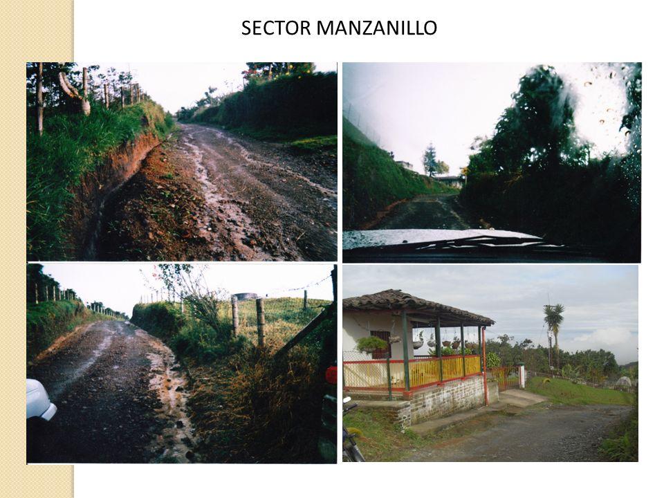 SECTOR MANZANILLO