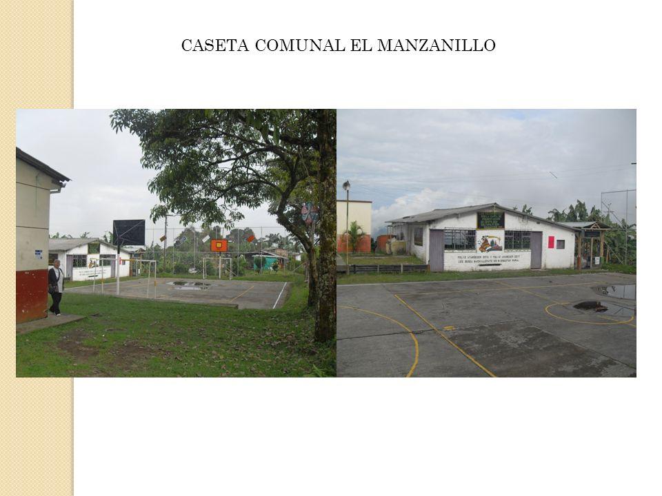 CASETA COMUNAL EL MANZANILLO