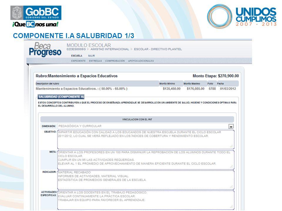 COMPONENTE I.A SALUBRIDAD 1/3