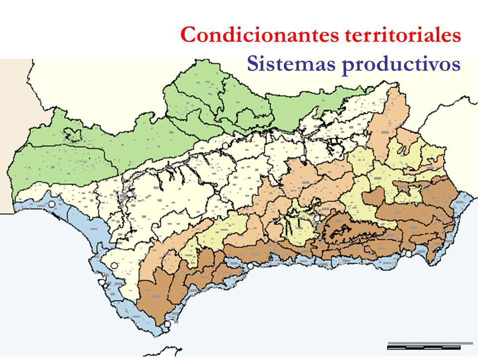 Condicionantes territoriales Sistemas productivos