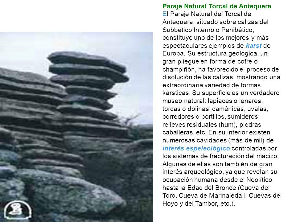 Paraje Natural Torcal de Antequera El Paraje Natural del Torcal de Antequera, situado sobre calizas del Subbético Interno o Penibético, constituye uno de los mejores y más espectaculares ejemplos de karst de Europa.