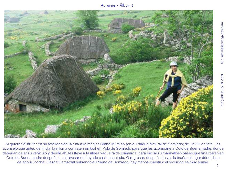 Fotografías: Javier Vidal http: asturiasenimagenes.com 53 Asturias - Älbum 1 Fotografías: Javier Vidal http: asturiasenimagenes.com Subiendo a Bulnes desde Poncebos, por La Canal del Texu, en 90