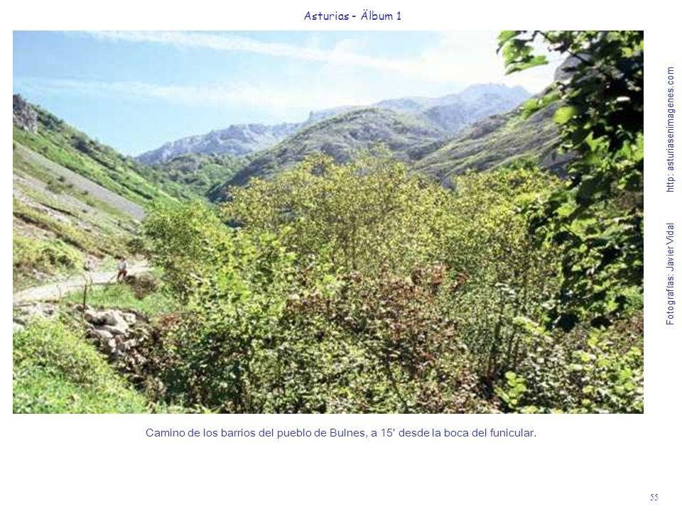Fotografías: Javier Vidal http: asturiasenimagenes.com 55 Asturias - Älbum 1 Fotografías: Javier Vidal http: asturiasenimagenes.com Camino de los barrios del pueblo de Bulnes, a 15 desde la boca del funicular.