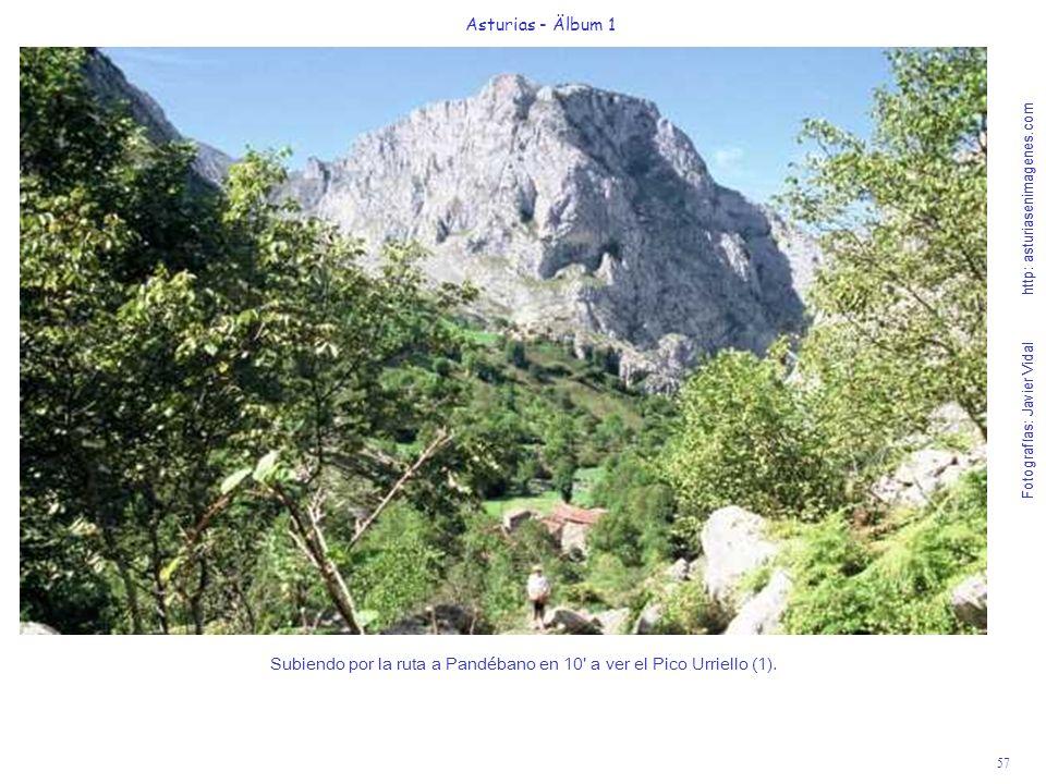 Fotografías: Javier Vidal http: asturiasenimagenes.com 57 Asturias - Älbum 1 Fotografías: Javier Vidal http: asturiasenimagenes.com Subiendo por la ruta a Pandébano en 10 a ver el Pico Urriello (1).