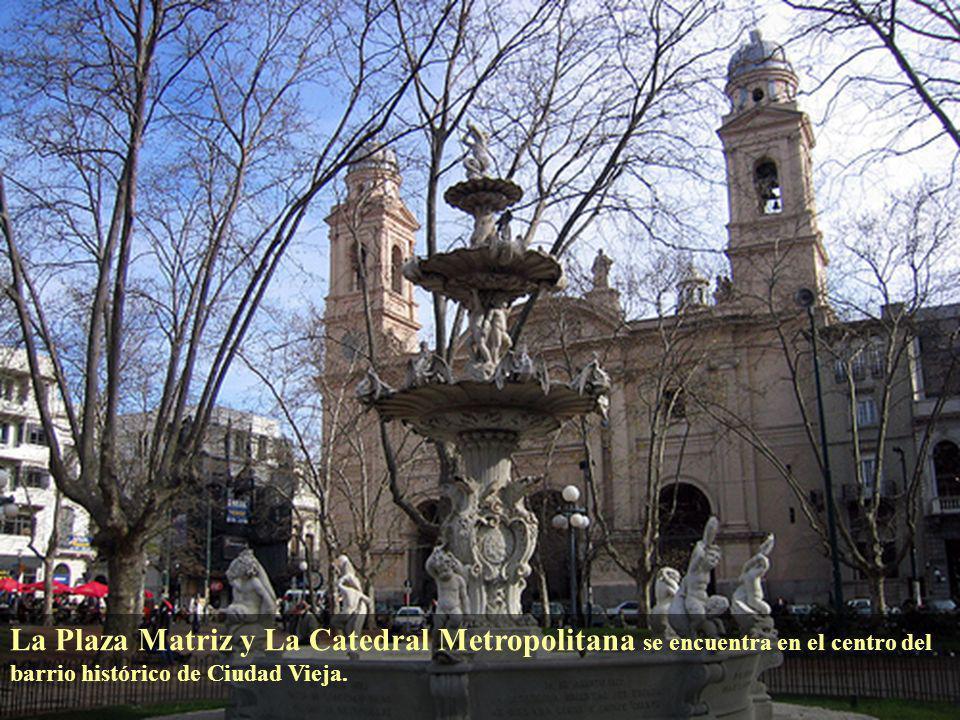 La Plaza Matriz y La Catedral Metropolitana se encuentra en el centro del barrio histórico de Ciudad Vieja.