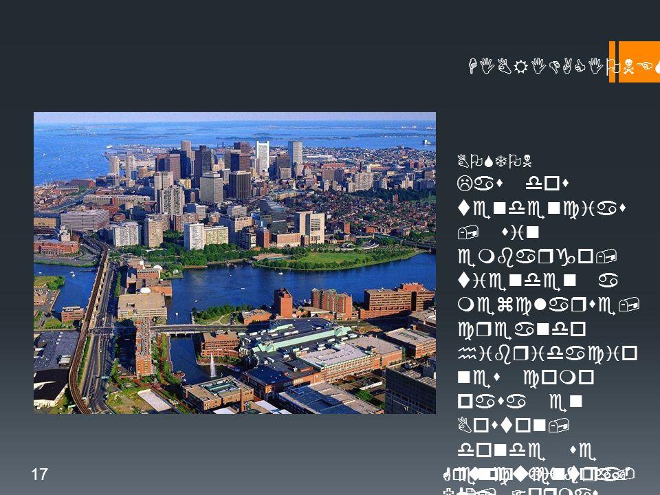 HIBRIDACIONES BOSTON Las dos tendencias, sin embargo, tienden a mezclarse, creando hibridacio nes como pasa en Boston, donde se encuentra la existencia paralela de calles multifunci onales gracias al soterramie nto de las grandes infrastruct uras.