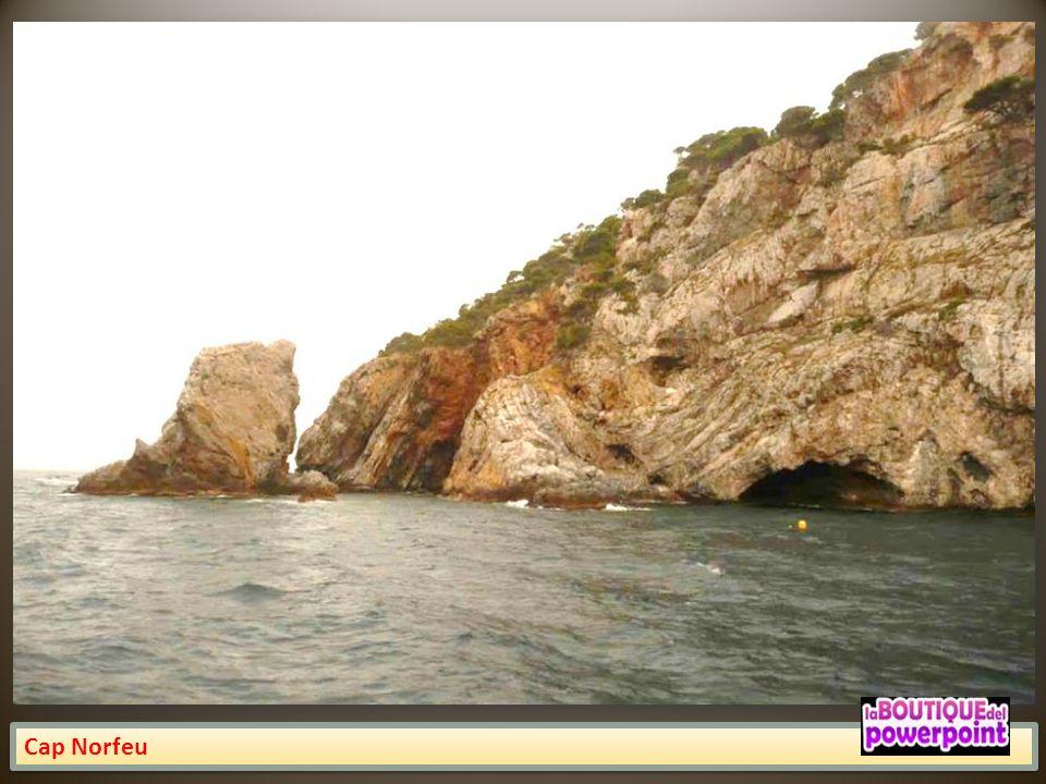 Punta Pansè