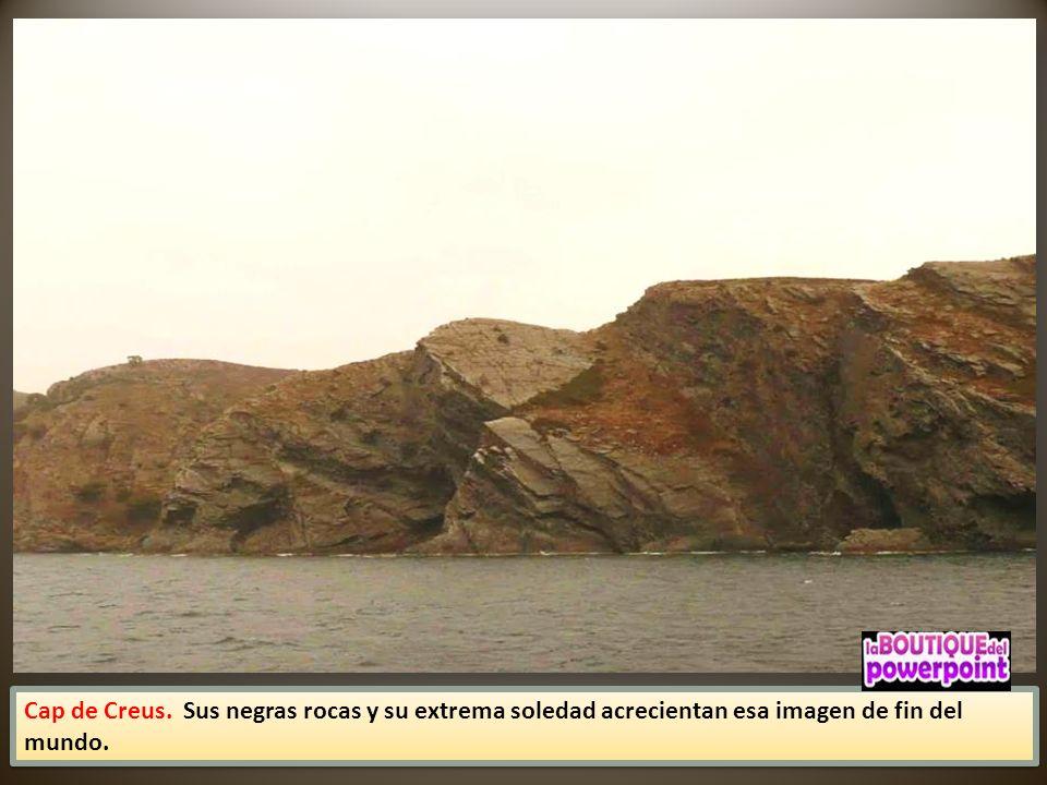 Protegido bajo la figura de parque natural y reserva marina, El Cap de Creus supone un baño de solitud en medio de la masificada Costa Brava.