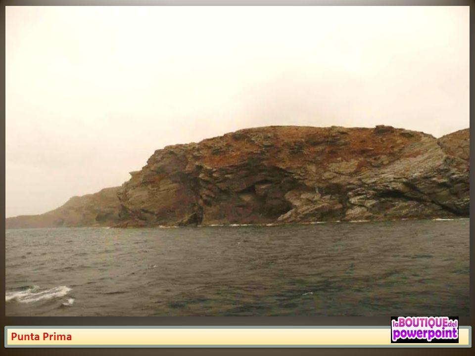 Punta de la Figuera
