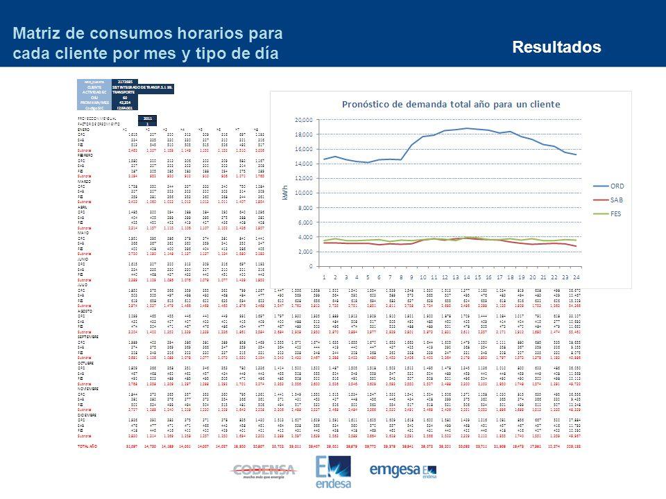 Matriz de consumos horarios para cada cliente por mes y tipo de día
