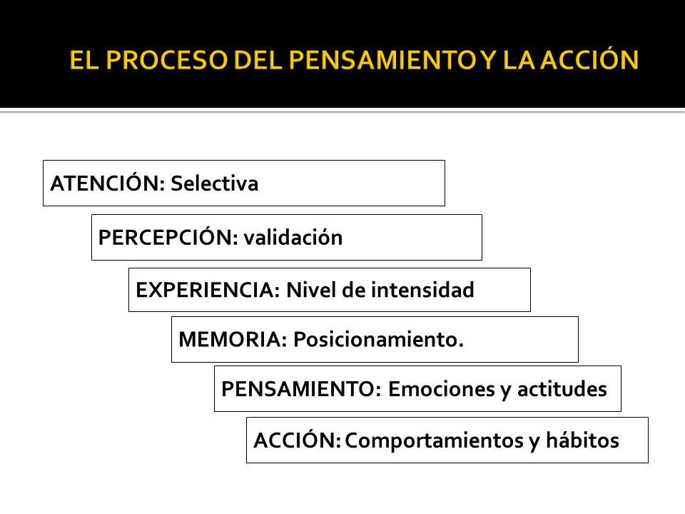 ATENCIÓN: Selectiva EXPERIENCIA: Nivel de intensidad PERCEPCIÓN: validación MEMORIA: Posicionamiento. PENSAMIENTO: Emociones y actitudes ACCIÓN: Compo