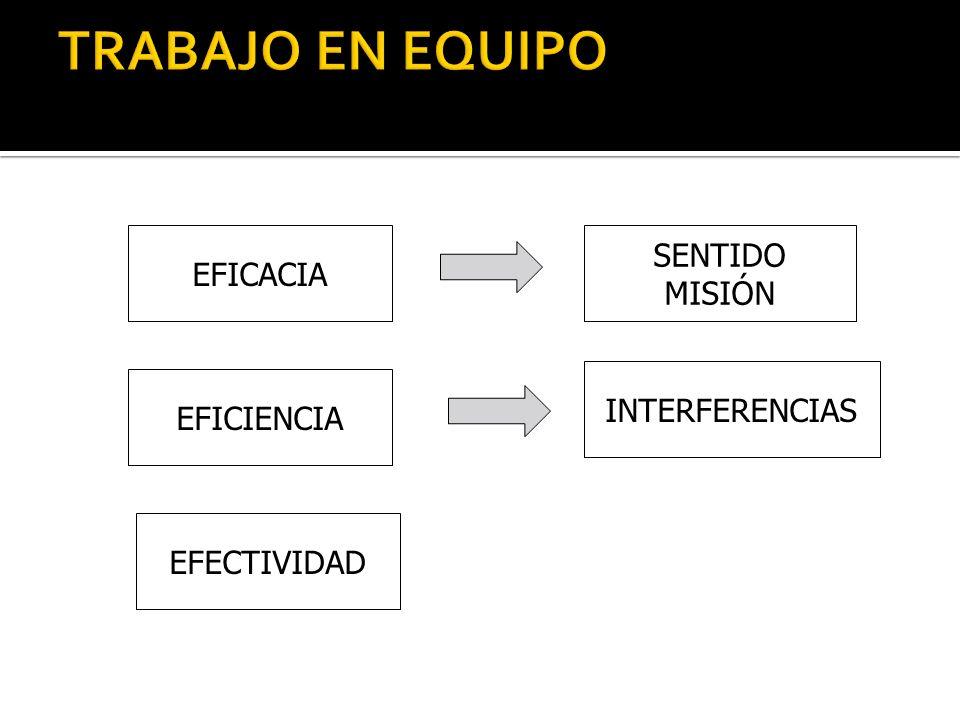 EFICACIA EFICIENCIA EFECTIVIDAD INTERFERENCIAS SENTIDO MISIÓN