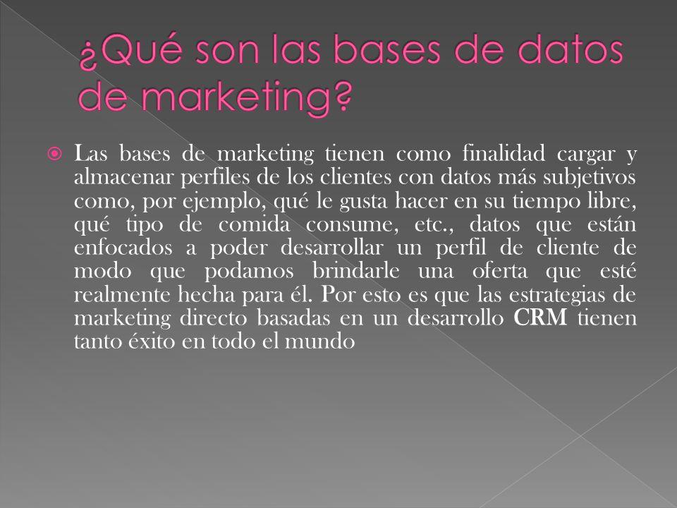 Las bases de marketing tienen como finalidad cargar y almacenar perfiles de los clientes con datos más subjetivos como, por ejemplo, qué le gusta hace