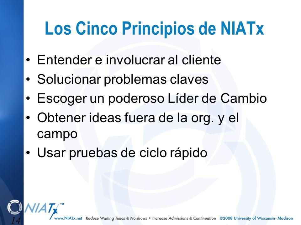 14 Los Cinco Principios de NIATx Entender e involucrar al cliente Solucionar problemas claves Escoger un poderoso Líder de Cambio Obtener ideas fuera