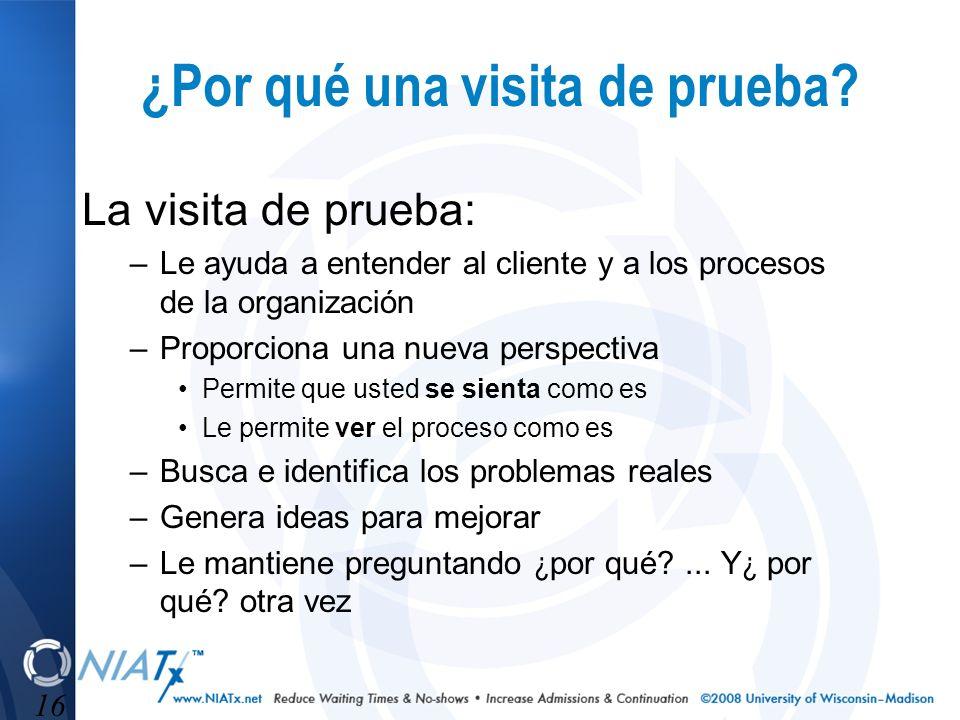 16 ¿Por qué una visita de prueba? La visita de prueba: –Le ayuda a entender al cliente y a los procesos de la organización –Proporciona una nueva pers
