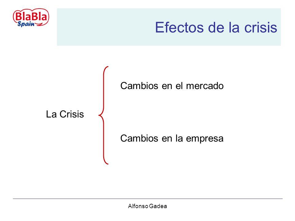 Alfonso Gadea Efectos de la crisis La Crisis Cambios en el mercado Cambios en la empresa