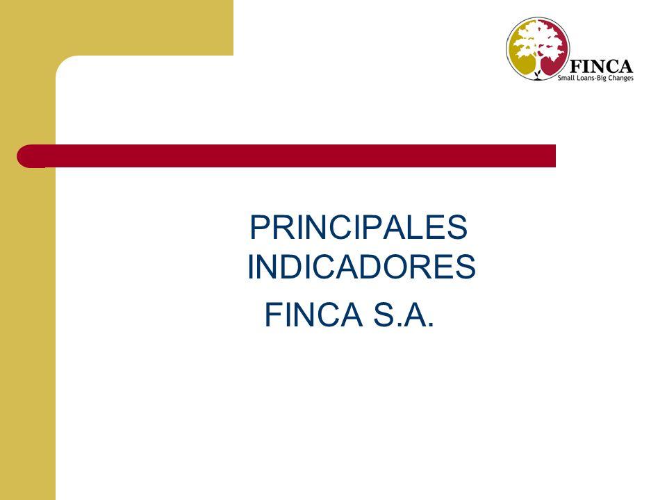 PRINCIPALES INDICADORES FINCA S.A.
