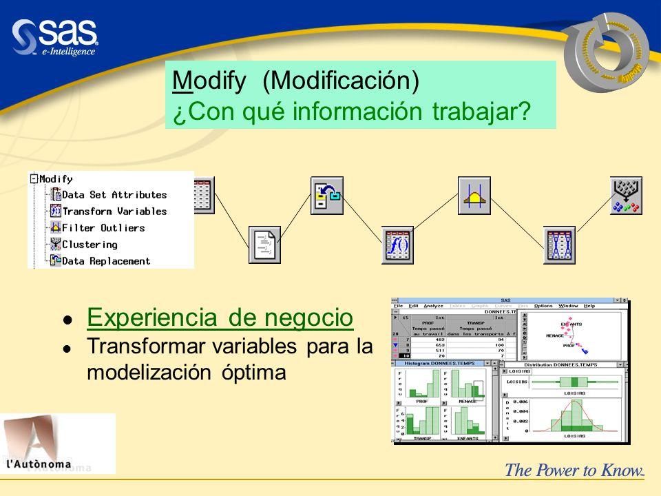 Experiencia de negocio Transformar variables para la modelización óptima Modify (Modificación) ¿Con qué información trabajar?