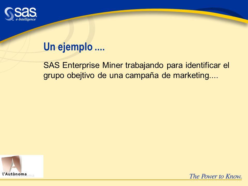Un ejemplo.... SAS Enterprise Miner trabajando para identificar el grupo obejtivo de una campaña de marketing....