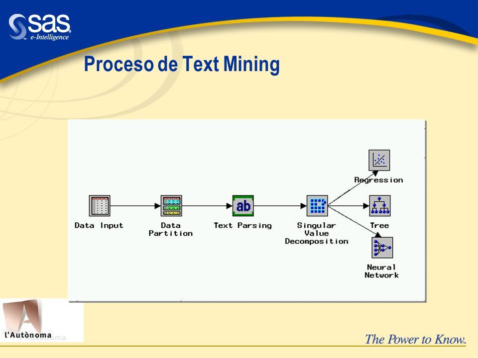 Proceso de Text Mining
