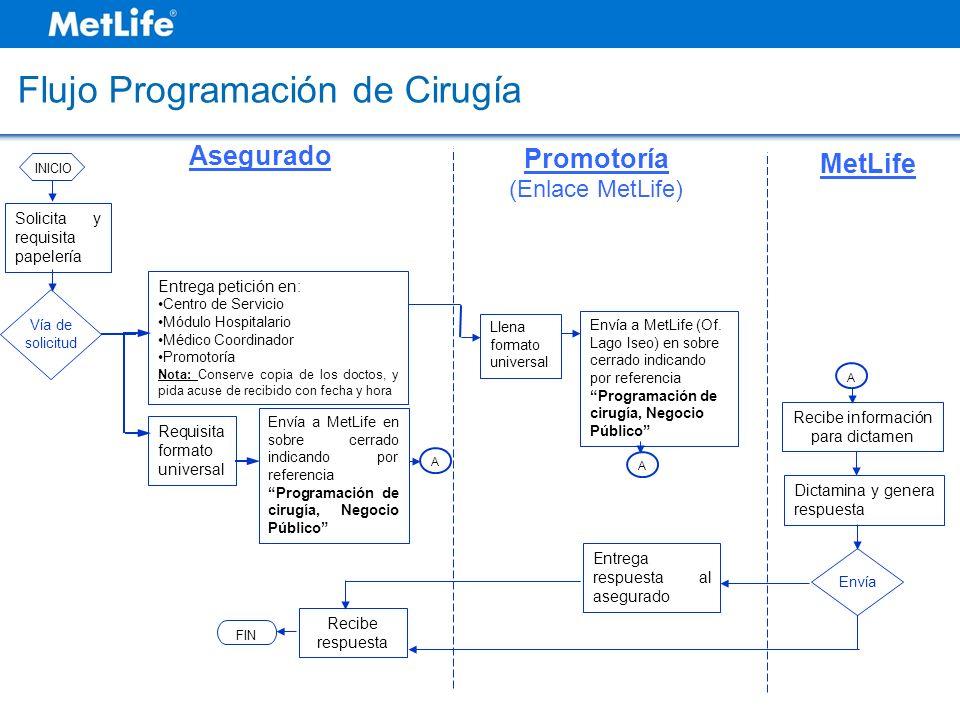 Flujo Programación de Cirugía Recibe respuesta FIN Asegurado MetLife Promotoría (Enlace MetLife) Solicita y requisita papelería Vía de solicitud INICI