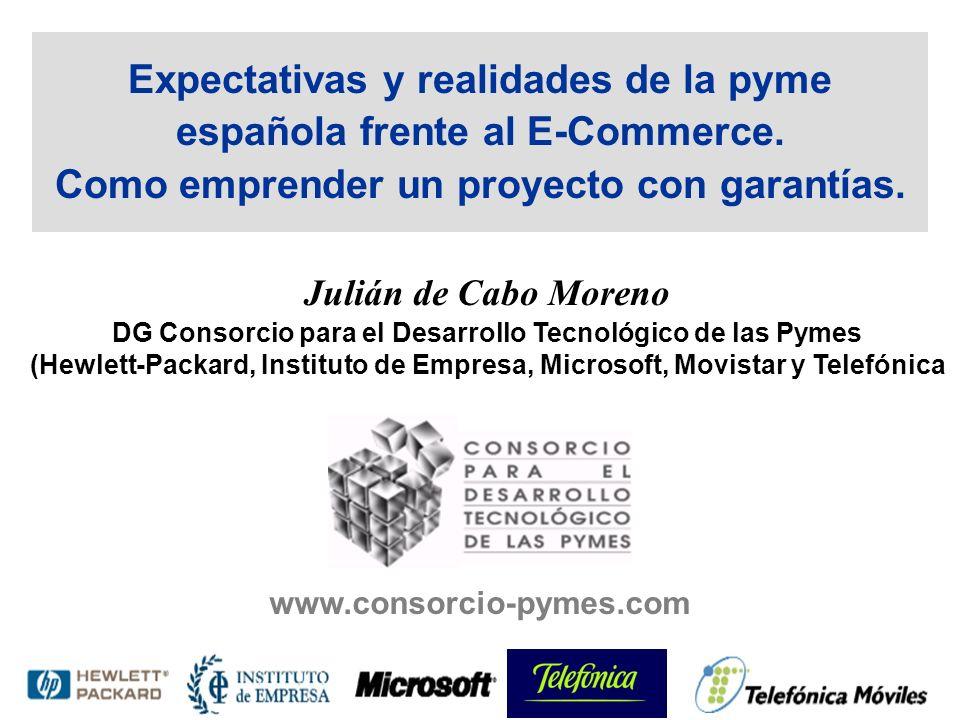 Expectativas y realidades de la pyme española frente al E-Commerce.