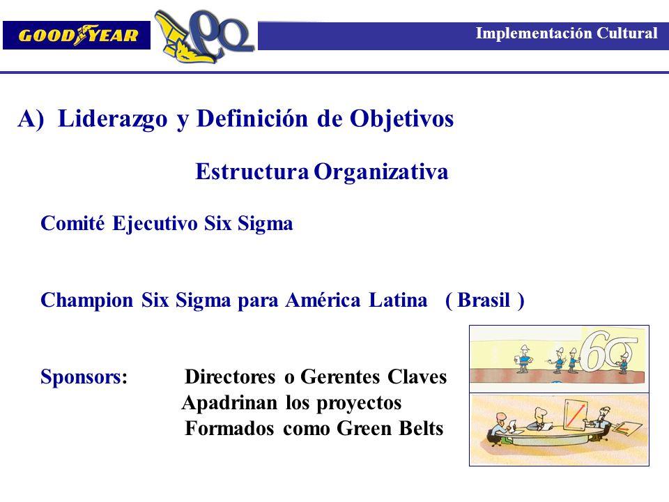 Comité Ejecutivo Six Sigma Champion Six Sigma para América Latina ( Brasil ) Sponsors: Directores o Gerentes Claves Apadrinan los proyectos Formados c