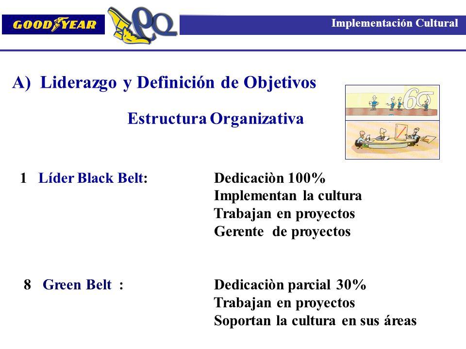 1 Líder Black Belt: Dedicaciòn 100% Implementan la cultura Trabajan en proyectos Gerente de proyectos 8 Green Belt : Dedicaciòn parcial 30% Trabajan e