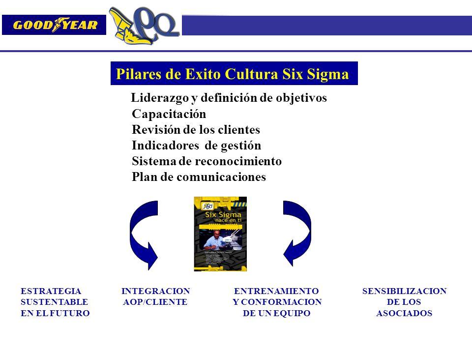 Pilares de Exito Cultura Six Sigma ESTRATEGIA SUSTENTABLE EN EL FUTURO INTEGRACION AOP/CLIENTE ENTRENAMIENTO Y CONFORMACION DE UN EQUIPO SENSIBILIZACI