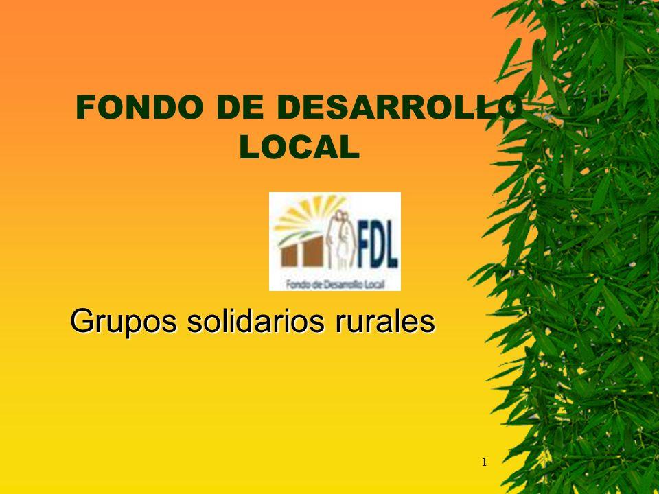 1 FONDO DE DESARROLLO LOCAL Grupos solidarios rurales Grupos solidarios rurales