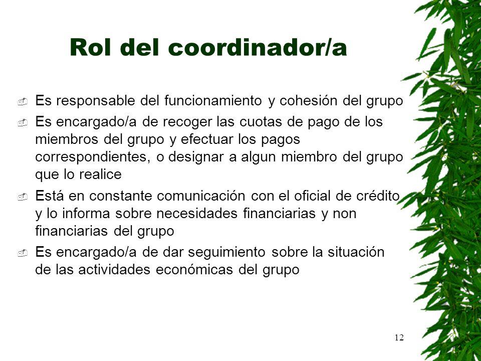12 Rol del coordinador/a Es responsable del funcionamiento y cohesión del grupo Es encargado/a de recoger las cuotas de pago de los miembros del grupo