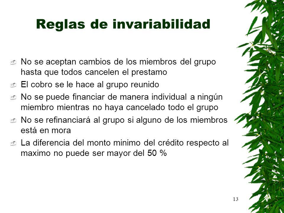 13 Reglas de invariabilidad No se aceptan cambios de los miembros del grupo hasta que todos cancelen el prestamo El cobro se le hace al grupo reunido