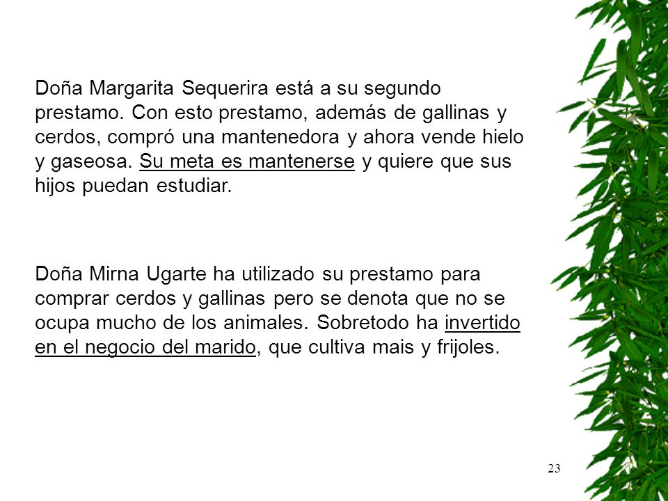 23 Doña Margarita Sequerira está a su segundo prestamo. Con esto prestamo, además de gallinas y cerdos, compró una mantenedora y ahora vende hielo y g