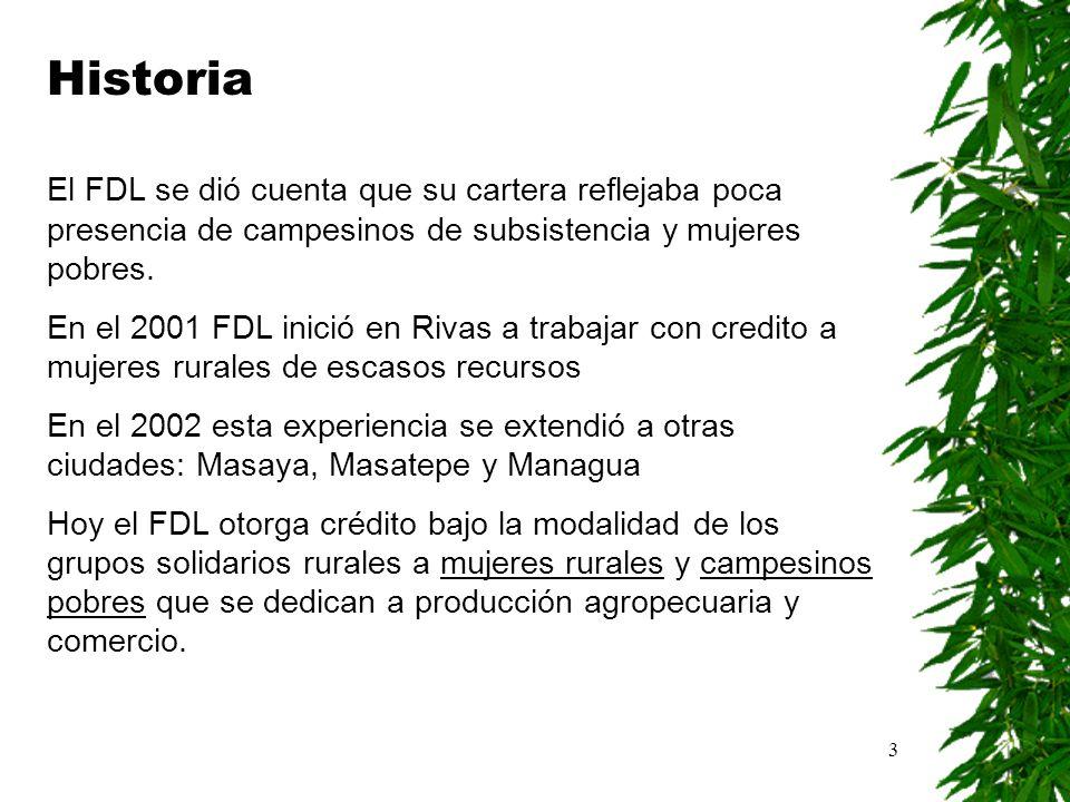 3 Historia El FDL se dió cuenta que su cartera reflejaba poca presencia de campesinos de subsistencia y mujeres pobres. En el 2001 FDL inició en Rivas