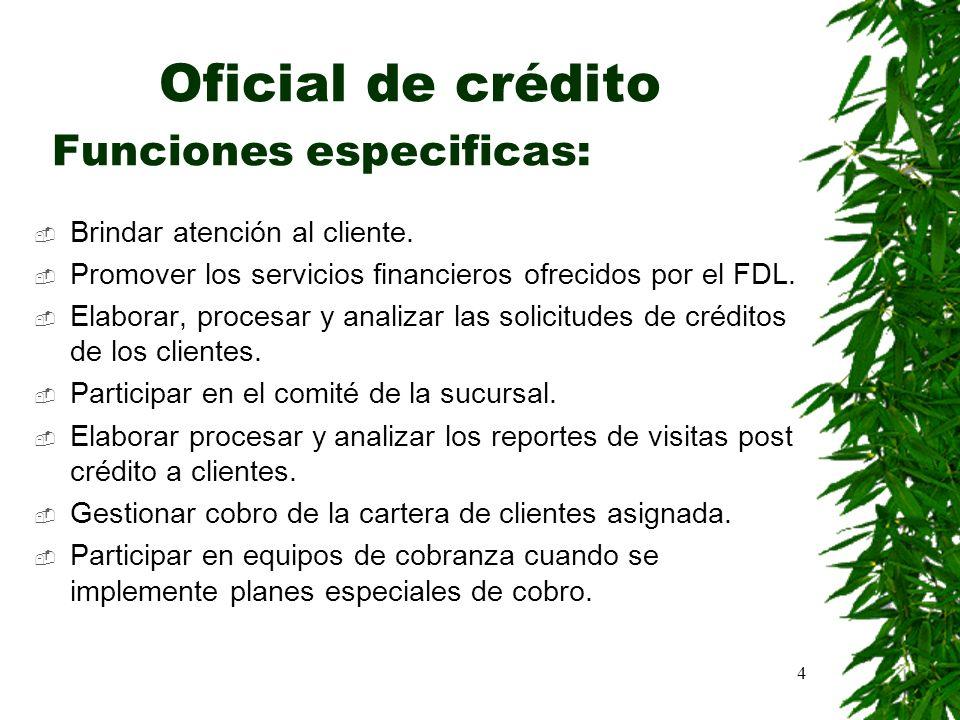 4 Oficial de crédito Funciones especificas: Brindar atención al cliente. Promover los servicios financieros ofrecidos por el FDL. Elaborar, procesar y