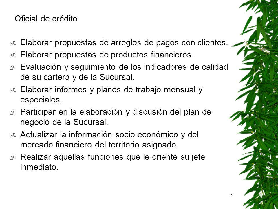 5 Elaborar propuestas de arreglos de pagos con clientes. Elaborar propuestas de productos financieros. Evaluación y seguimiento de los indicadores de