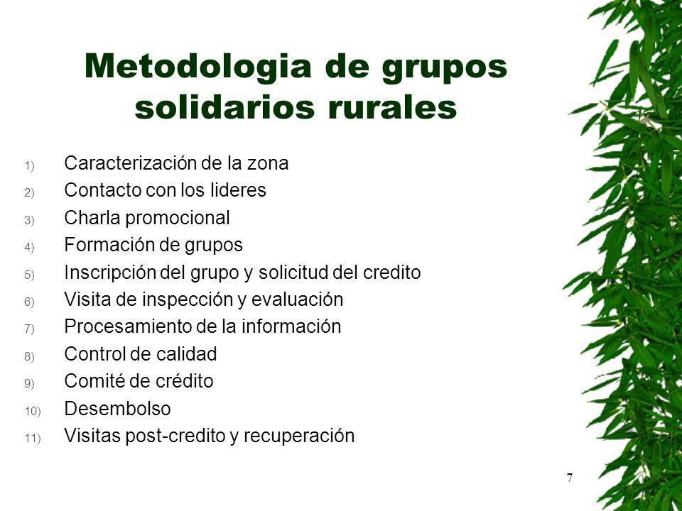 7 Metodologia de grupos solidarios rurales 1) Caracterización de la zona 2) Contacto con los lideres 3) Charla promocional 4) Formación de grupos 5) I